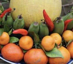 5 loại quả cấm kỵ thắp hương ngày MÙNG 1 hàng tháng