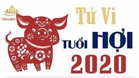 Tử vi tuổi Hợi năm 2020