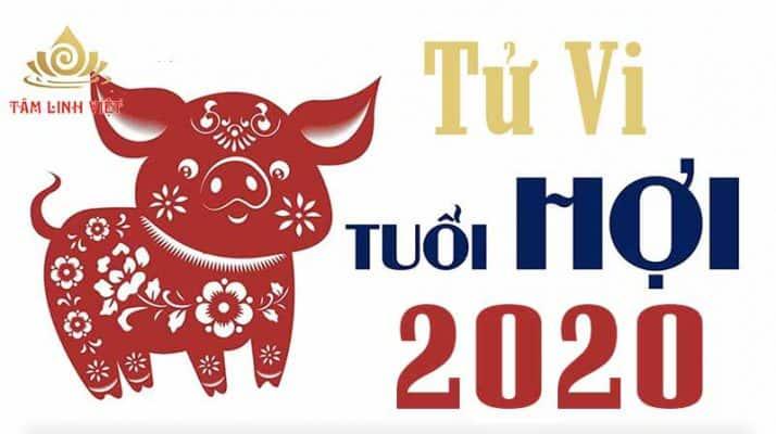Tử Vi Tuổi Hợi 2020