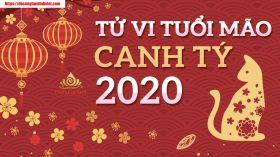 Tử vi tuổi Mão trong năm Canh Tý 2020
