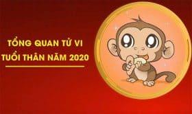Xem Tử Vi Tuổi Thân 2020