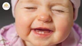 Bé mọc răng lười bú cách xử lý