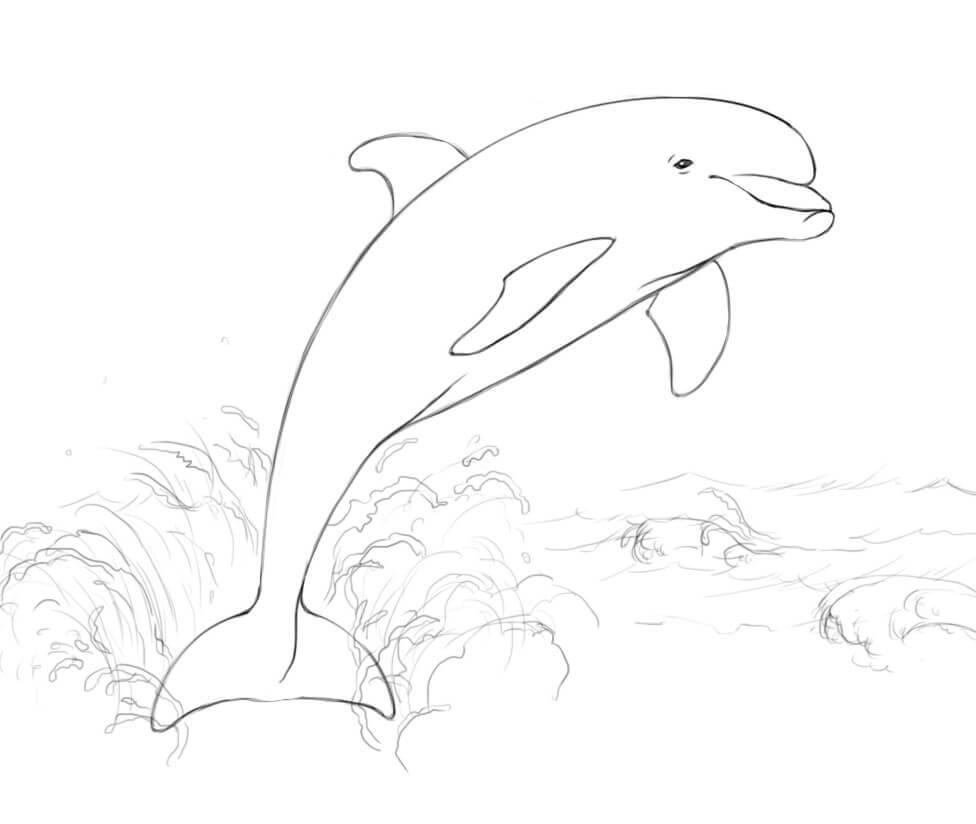 Tranh tô màu Cá Heo Nhảy