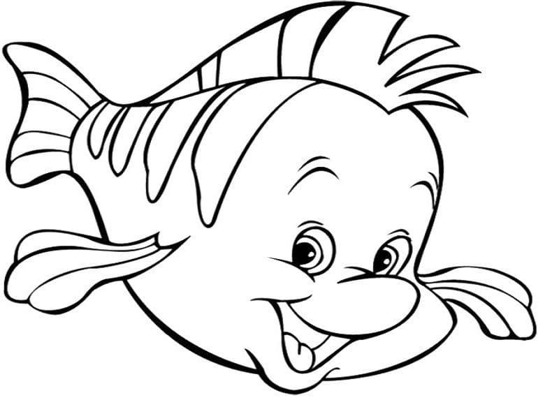 con cá flounder vui vẻ e1599465609669
