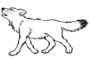 con chó sói dang hú e1599208325838
