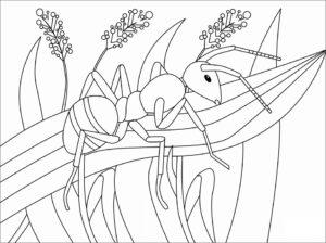 con kiến trên lá