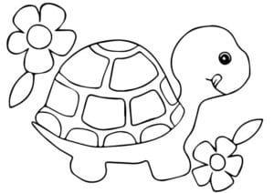 con rùa và 2 bông hoa e1599208195410