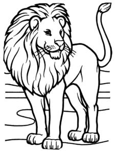 một con sư tử dực