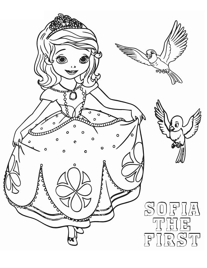 sofia và những chú chim