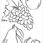tranh to mau trai cay hoa qua cho be 066