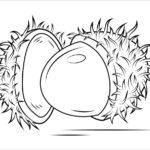 tranh to mau trai cay hoa qua cho be 073